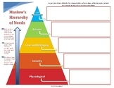 Maslow's Hierarchy of Needs in Business: Graphic Organizer