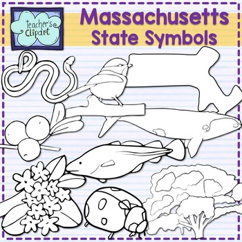 Massachusetts state symbols clipart