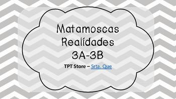 Matamoscas (Realidades I - 3A & 3B)