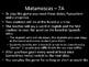Matamoscas (Realidades I - 7A & 7B)