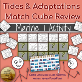 Match Cube Collaborative Review Game Tides and Intertidal Adaptations w/KEYS