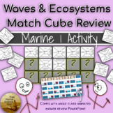 Match Cube Collaborative Review Game Waves & Coastal Ecosystems w/KEYS
