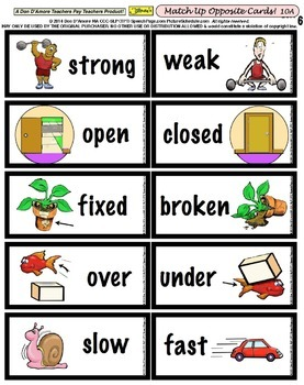 100 Illustrated Opposites Cards! (50 pairs) & Reveal Activity! 2 WAYS TO TEACH!