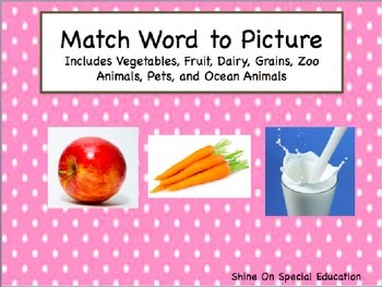 Match Word to Picture - Adapted Book/File Folders