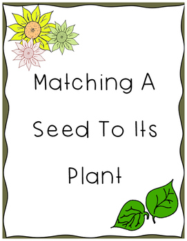Match a Seed to its Plant