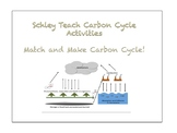 Match and Make Carbon Cycle