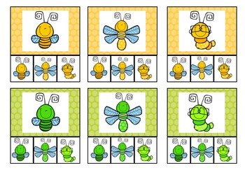 Match the Bugs Clip Cards