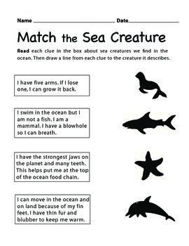 Match the Sea Creature