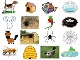Match the animals to their homes