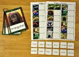 Matching Activities:  Rain Forest Match and Flip Books and Matching Mats