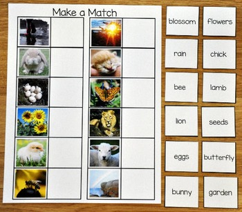 Matching Activities:  Spring Match and Flip Books And Matching Mats