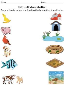 Matching Activity - Animal Shelters