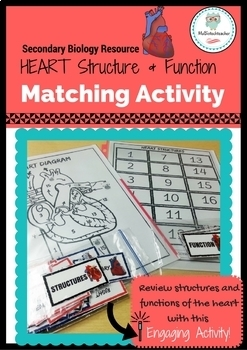 Structures and Functions of the HEART-Matching Activity