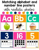 Bright  Colored Alphabet and Number Posters with Photograp