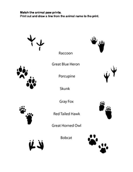 Matching Animal Paw Prints
