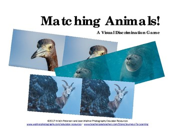 Matching Animals! A Visual Discrimination Game