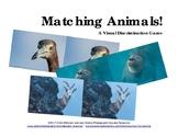 Matching Animals! A Visual Discrimination Game