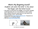 Matching Beginning Letter to Animals
