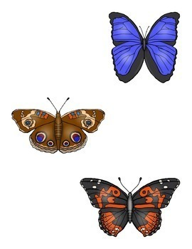 Matching Butterflies File Folder Game