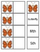 Matching Butterfly lifecycle 4 levels