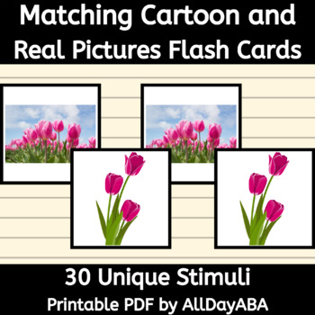 Matching Cartoon and Real Pictures Flash Cards - PEAK Direct Training Goal 7A