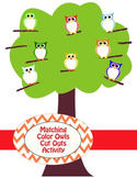 Matching Color Owls Activity
