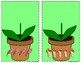 Matching Flower & Flowerpots Counting Objects 0 -10 Mats - Learning Center Kit