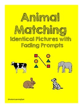 Matching Identical Animals With Fading Prompts