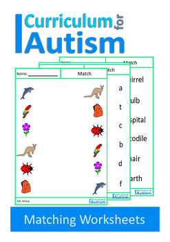 Autism, Matching Nouns, Vocabulary, Special Education, Speech Therapy, ESL