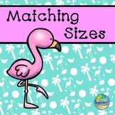 Matching Sizes--Flamingos