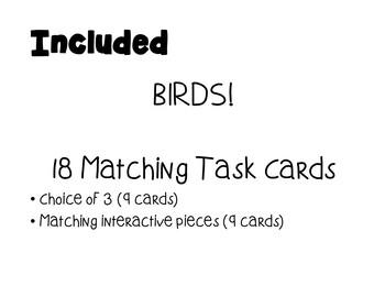 Matching Summer Birds - Task Cards