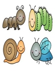 Matching bugs - spring activities