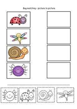 Matching bugs - spring activities differentiated