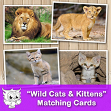 """Matching cards - """"Wild Cats & Kittens"""""""