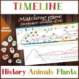 Montessori, The Timeline of Life - Matching game, Sorting animals and plants