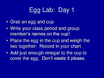 Material Transport (Osmosis) in an Egg