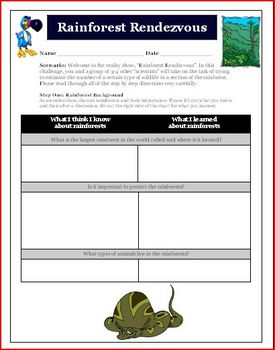 Median and Graphing Math Activity Rainforest Rendezvous