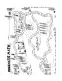 Multiplication Corn Maze