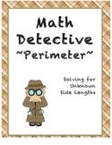 Math Detective - Perimeter