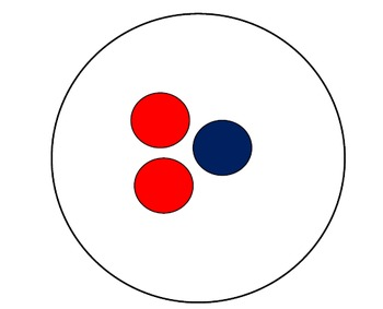 Math Dot Plates - Instant Number Pattern Recognition Skills
