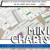 Math & ELA Mini Charts Bundle   Set 1 (Mini Anchor Charts)