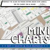 Math & ELA Mini Charts Bundle | Set 1 (Mini Anchor Charts)