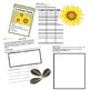 Plan Your Own Garden Math Enrichment Project - Upper Elementary & Middle School