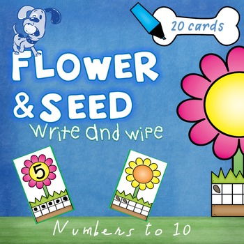 Numbers 1-10 Write and Wipe
