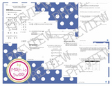 Math In Focus - Grade 4 - Chapter 6 (Fractions and Mixed Numbers) Review/Test