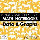 Math Notebooks: K-1 Data & Graphs