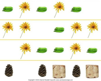 Math Pattern Cards - Nature Theme - Montessori