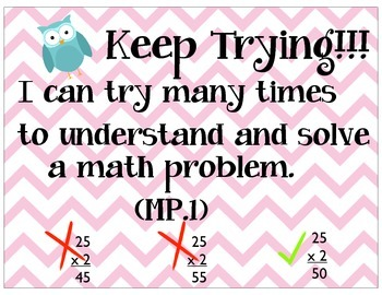 Math Practices Owls