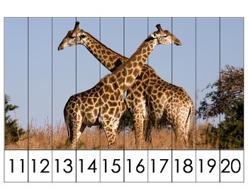 Math Sequencing Puzzles- 11-20