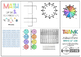 Math Visual Supports for Students with Dyslexia, Special Education & RTI